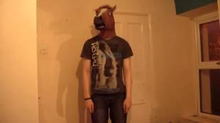 Horse Defies Gravity