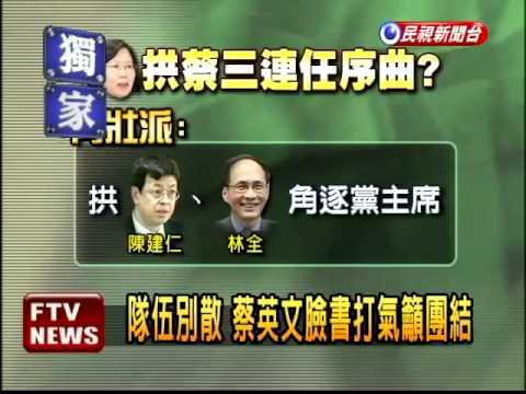 青壯派欲修黨章 拱蔡三任黨魁-民視新聞
