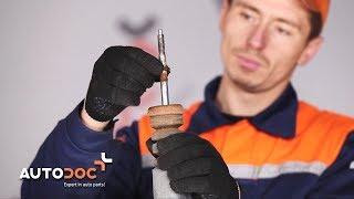 Montage Veerpoten achter VW LUPO: videotutorial