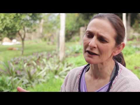 Fundos Solidários e Movimento Social – Movimento de Mulheres Camponesas – MMC