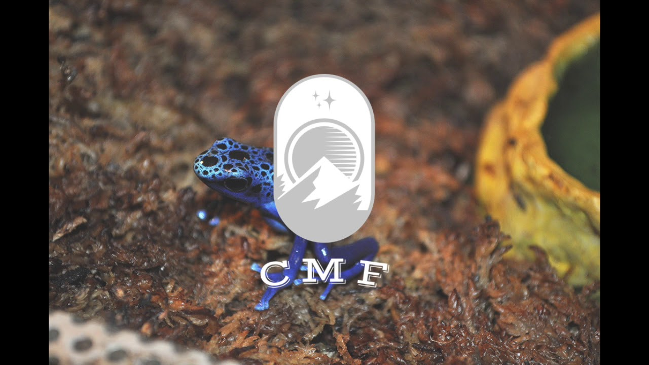 IUCN Redlist | CMF Podcast 1.3
