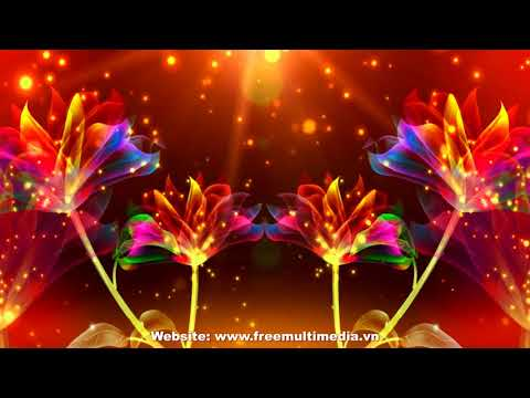 Video Background Wedding - Magic Colorful Flowers thumbnail