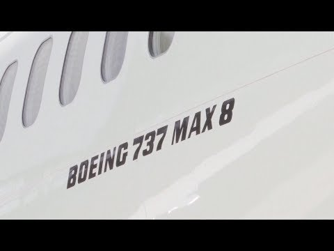 Indonesia releases results for cause of Boeing 737 MAX jet crash