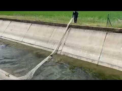 La Guardia Civil salva un corzo en León