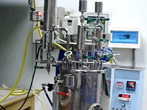Lab. R&D Chemical Reactor