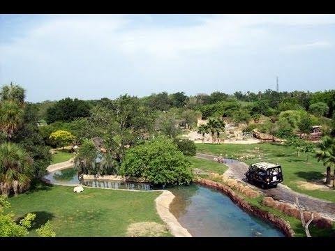 Busch Gardens Tampa Skyride POV (On Board) HD