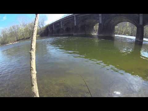 Juniata River Smallmouth Bass Fishing