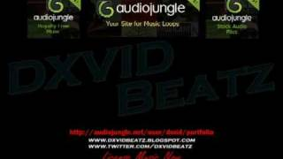 License Music by dxvidbeatz on Audio Jungle! - Hip Hop Loop 4