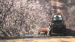 """""""More Than Honey"""" (Mucho más que miel) trailer español."""