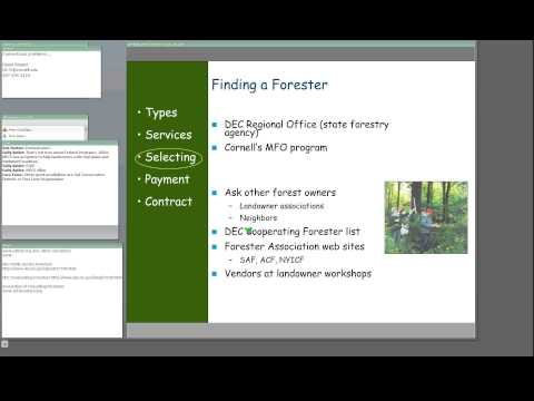 A landowner's guide to working with foresters