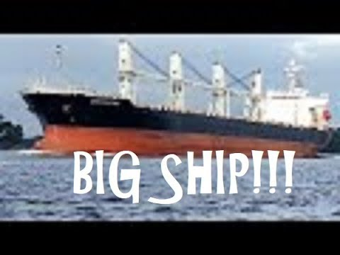 Huge Ship on the Delaware River ~ the Ocean Star from Hong Kong going under draw bridge