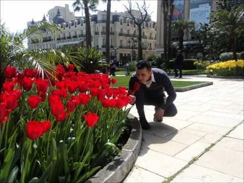 Kujtime nga Monte -Carlo(Monaco,France)