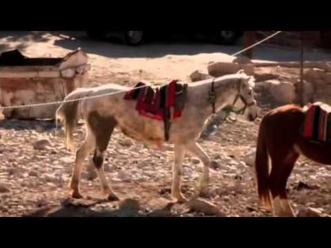 Ch 5 Holiday Heaven on Earth (Jordan) Feynan, Petra, Amman