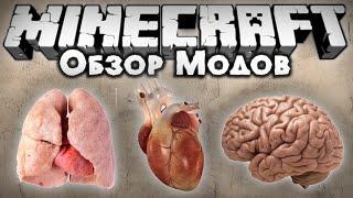 обзор модов #186 ОРГАНЫ, СЪЕШЬ ИХ!!! / Realistic Deaths Mod