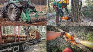 Wielki MIX prac leśnych (CZĘŚĆ 1) || Okiem ZULa