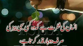 Best Urdu Quotes // Islamic Quotes // Achii baatein // Best Quotations for life changing/Rehan quote
