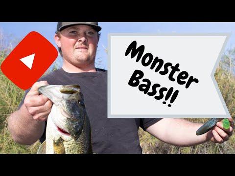 Bass Fishing Arizona   Colorado River   Yuma AZ