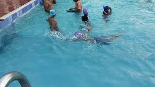 Krishna's swimming session