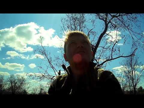 сходил в лес за КОРОЙ для ОРХИДЕЙ