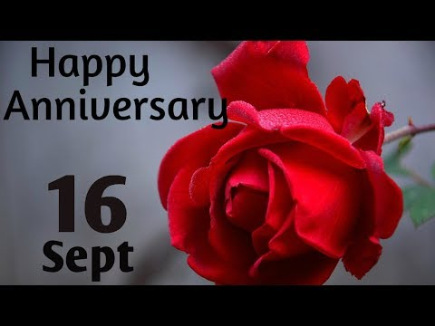 Happy Anniversary 16 Sept Wedding Anniversary Wishes Greetings Quotes For Couplewhatsapp Status Youtube