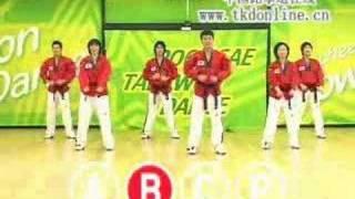 Re: Taekwondo Dance