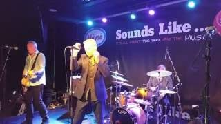 Dr Feelgood - See You Later Alligator (LIVE HD 2016)