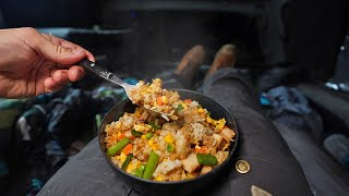 Cooking gourmet Fried Rice in my truck (camping meal)