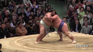 2017年大阪場所での琴奨菊 vs 高安の取組。