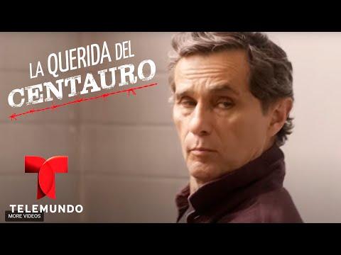 Centauro's Woman   Weekly Recap (1/15/2016)   Telemundo English