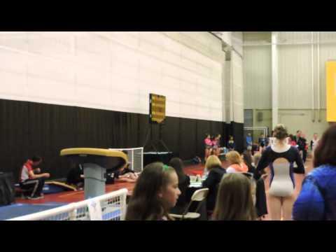 Emily Carey Level 9~Northeast Gymnastics Academy~2015 Region 7 Regionals~ Vault