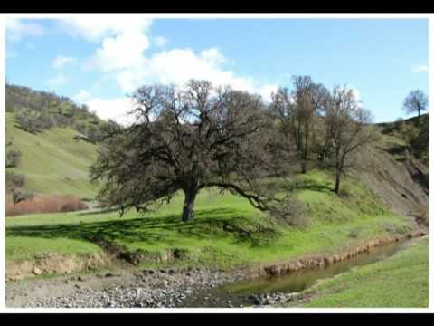 Spring in Capay Valley, Rumsey & Williams, California