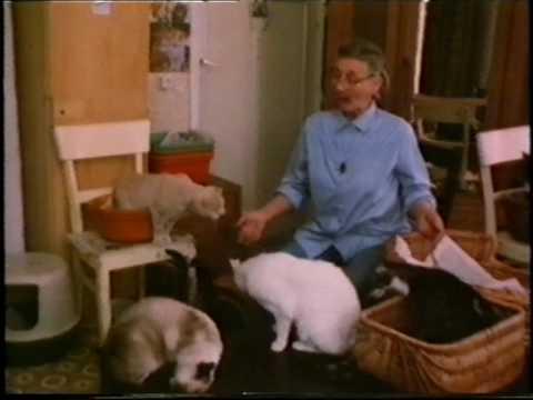 Showroom - Greet van de Burg, het kattenvrouwtje