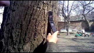 Прикол=)Телефон.mp4