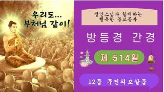 ● 방등경 간경 제514일 제12품 무진의보살품 -정인