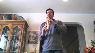 "Theme from ""Dying Young"" by Daniel Cohen Curved Soprano Saxophone"