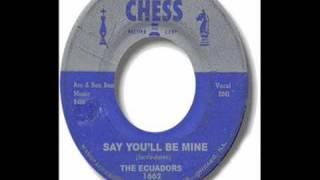 Ecuadors - SAY YOU
