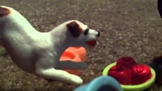 Good Dog, Bad Dog, WILD Dog (Ep. 10)