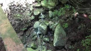 2011_0514中蓮寺峰01.mp4