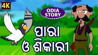 ପାରା ଓ ଶିକାରୀ - The Pigeons and The Hunter in Odia | Odia Story | Fairy Tales in Odia | Koo Koo TV
