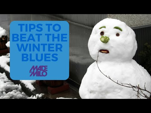 Milo's Tips to Beat The Winter Blues!