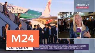 Сборную Ирана встретили в Москве - Москва 24