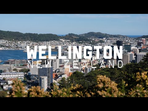 My Outdoor Adventure Playground in Wellington, New Zealand