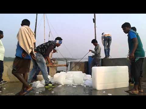 Balaramgadi Fishing Resort, Chandipur, Balasore
