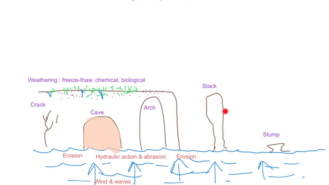 caves arches stacks and stumps diagram ford 4 wire o2 sensor wiring let s revise youtube