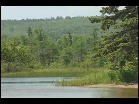 A String of Pearls: Wisconsin's Estuaries Along Lake Superior