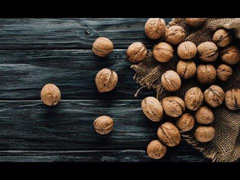 Вопрос: Из чего образована скорлупа орехов?