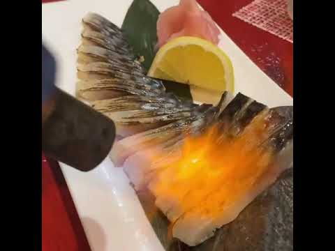 鶏と地魚が旨い店 KADOGAWA 炎家 -enya-(宮崎県東臼杵郡門川町門川尾末8317)