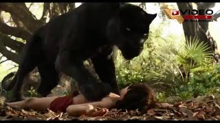Jungle Book Malayalam Song HD