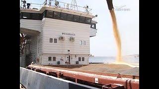 видео: Экспортный потенциал Самарской области. Агрокурьер