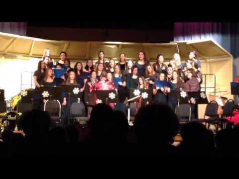 Ladywood high School Christmas 2013 concert